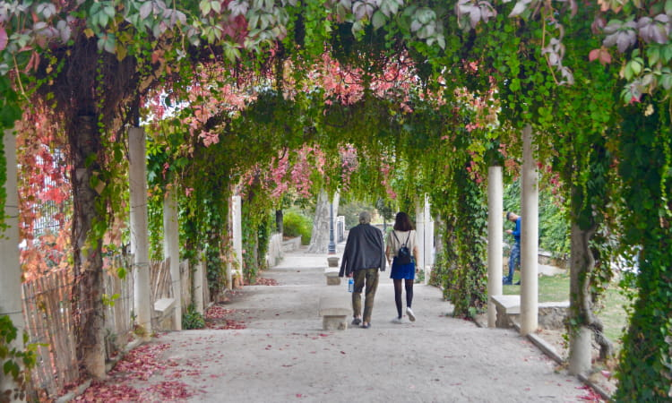 Two people walk under an archway of flowers and vines in a botanical garden