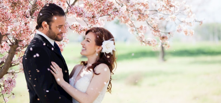 Bride and groom smile and embrace under a cherry blossom tree