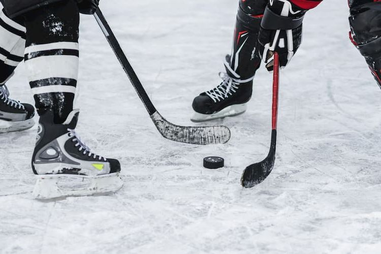 Two hockey players with puck