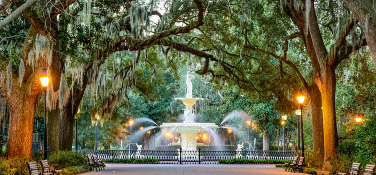 a fountain surrounded by old trees at forsyth park