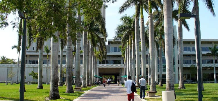 Students walking into a University of Miami campus library.