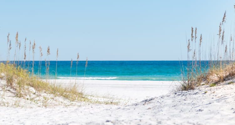 View of white sand dunes in Pensacola, the ocean visible in the distance