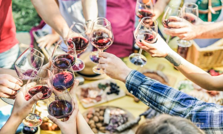 A group of friends toast glasses of wine at a vineyard