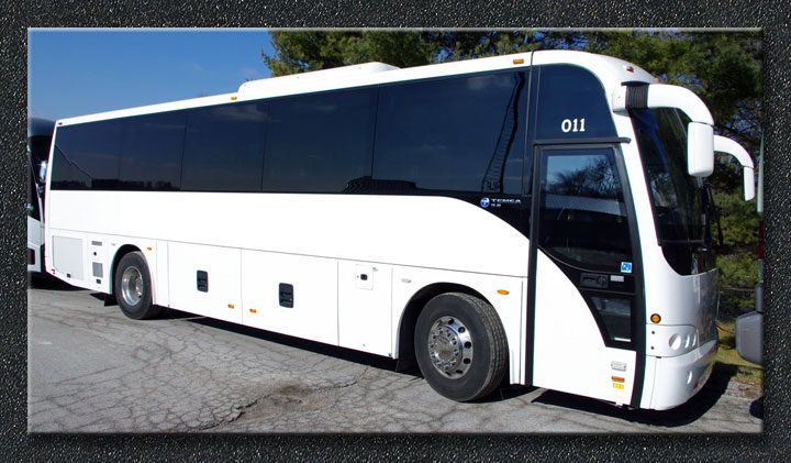 Temsa Buses For Sale | Shofur Market